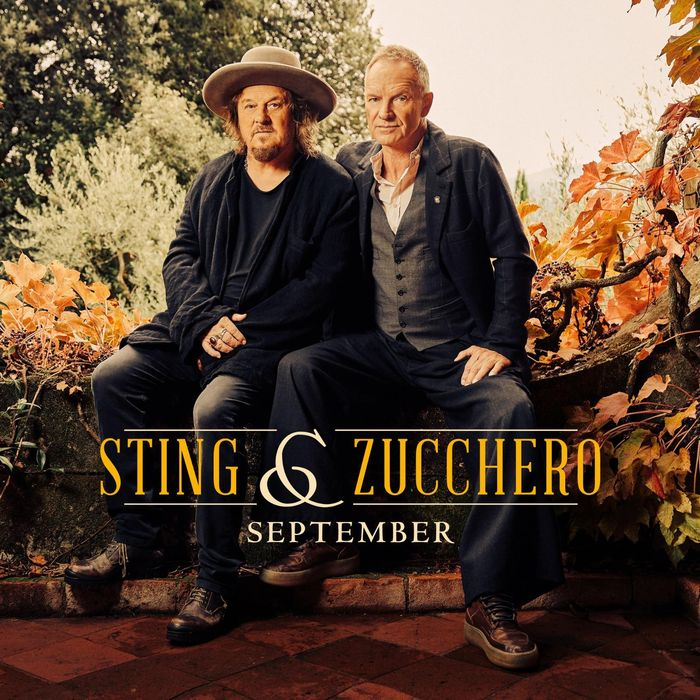 https://a6p8a2b3.stackpathcdn.com/2Hj4vPlzyPRhe9gXeW6jpxvQf0k=/700x0/smart/rockol-img/img/foto/upload/september-cover-singolo-sting-zucchero-credito-di-daniele-barraco.jpeg