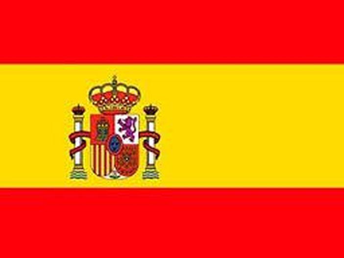 Proteste in Spagna per l'arresto di Pablo Hasél, condannato per insulti ai reali iberici