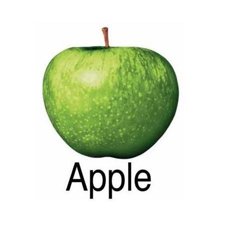 Domanda accolta, la Mela dei Beatles ora è di proprietà della Apple di Cupertino