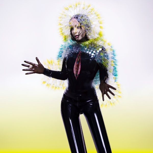 Go to the review of VULNICURA by Bjork