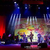 3 ottobre 2014 - Club Tenco - Teatro del Casinò - Sanremo (Im) - Tetes De Bois in concerto