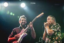 Concerti, Bruce Springsteen a Roma, ad aprire il concerto anche Fabio Treves
