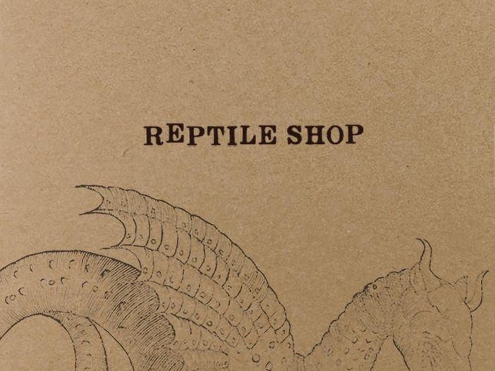 """Le recensioni di Reg Mastice: Reptile Shop, """"Stoned draak"""" (1993)"""