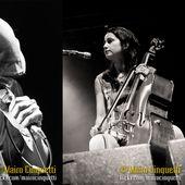 4 luglio 2013 - Carroponte - Sesto San Giovanni (Mi) - Perturbazione in concerto