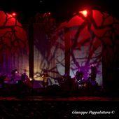 24 marzo 2017 - Teatro Nuovo Giovanni da Udine - Udine - Vinicio Capossela in concerto