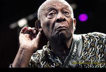 B.B. King, cinque anni fa ci ha lasciato il grande bluesman