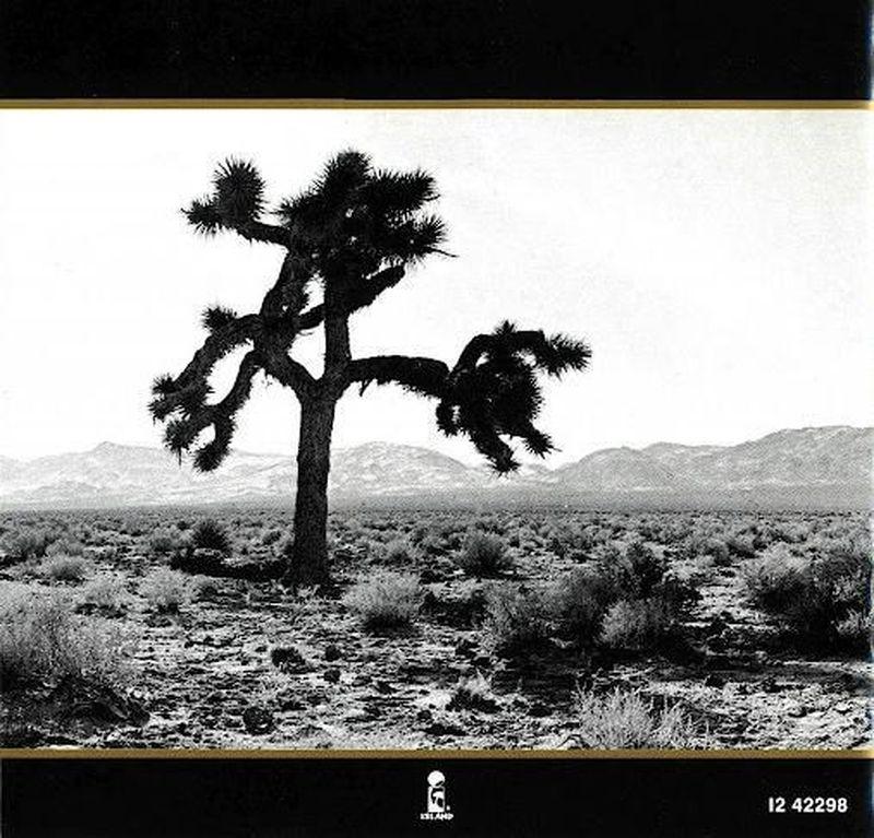 Un albero chiamato Joshua