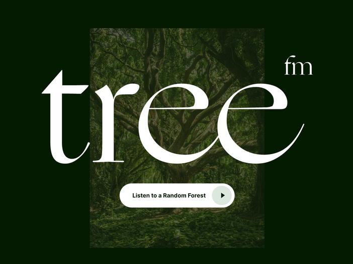 La web radio della foresta (no, Tarzan non c'entra)