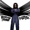 Wyclef Jean/THE ECLEFTIC: 2 SIDES II A BOOK
