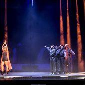 8 novembre 2015 - Teatro Regio - Parma - Malika Ayane in concerto
