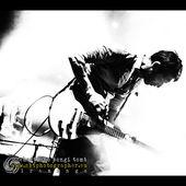6 settembre 2012 - Metarock - Parco della Cittadella - Pisa - Marlene Kuntz in concerto