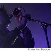 8 Novembre 2009 - Zoppas Arena - Conegliano (Tv) - Massive Attack in concerto