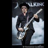 25 giugno 2014 - Arena Concerti - Rho (Mi) - Walking Papers in concerto