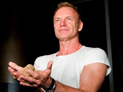 Sting, nel nuovo album 'The last ship' anche Brian Johnson (AC/DC)
