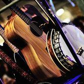 9 Settembre 2011 - Festa della Birra - Crescentino (Vc) - Rio in concerto