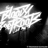 11 novembre 2013 - Alcatraz - Milano - Bloody Beetroots in concerto