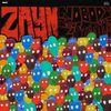 Zayn Malik - Nobody Is Listening
