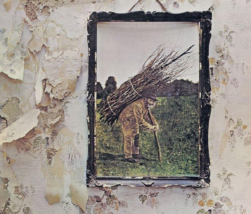 Il pappagallo che canta Led Zeppelin, Beatles, Rolling Stones. Ascolta...