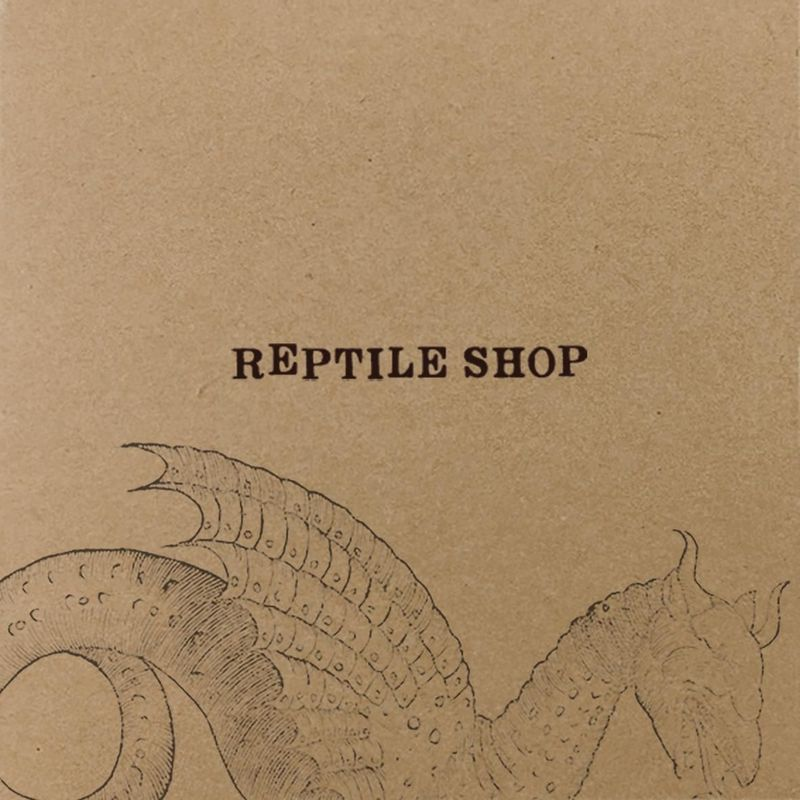 "Le recensioni di Reg Mastice: Reptile Shop, ""Stoned draak"" (1993)"