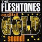 Fleshtones - SOLID GOLD SOUND