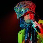 11 novembre 2015 - Fabrique - Milano - Roisin Murphy in concerto