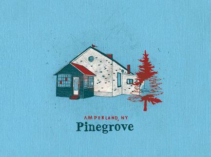 I Pinegrove rimodellano il passato per guardare al futuro  - Voto 7/10
