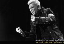 Billy Idol ha la sinusite: annullato il concerto di Padova