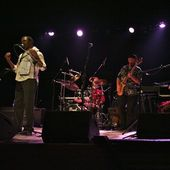 5 Novembre 2010 - Teatro Comunale - Camino al Tagliamento (Ud) - Grand Mothers Re-Invented in concerto