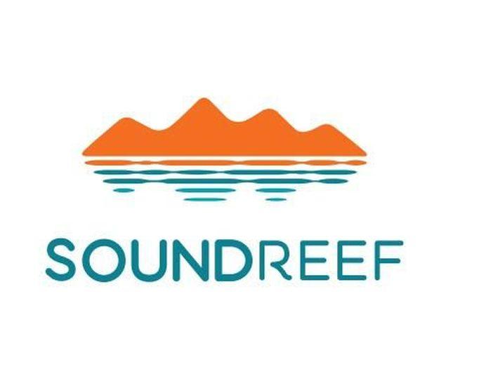 Soundreef: nel 2018 cresciuti guadagni per autori ed editori