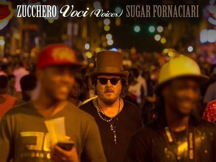 Zucchero, il singolo 'Voci' per il mercato internazionale: l'ascolto di Rockol