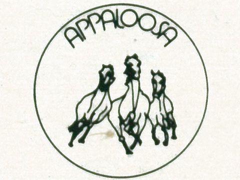 Appaloosa, torna sul mercato l'etichetta tutta italiana di blues e 'Americana'