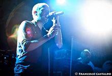 Heavy metal Pub – tapas: Paradise Lost