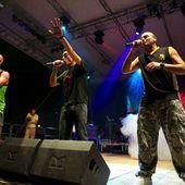 2 Luglio 2010 - Rototom Free - Parco del Cormor - Udine - Sud Sound System in concerto