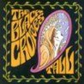 Black Crowes - THE LOST CROWES