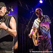 14 giugno 2013 - Carroponte - Sesto San Giovanni (Mi) - Hayseed Dixie in concerto