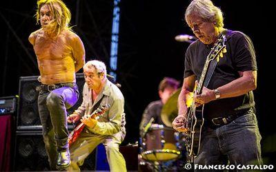 11 luglio 2013 - Ippodromo del Galoppo - Milano - Iggy Pop in concerto